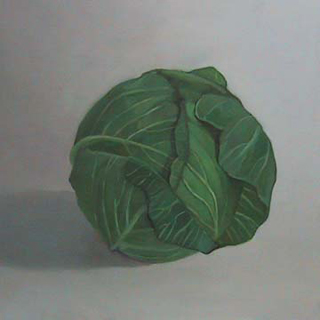 "Cabbage IV (12"" x 12"") oil on panel 2007"
